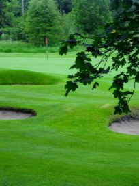 Wee Course, Blairgowrie